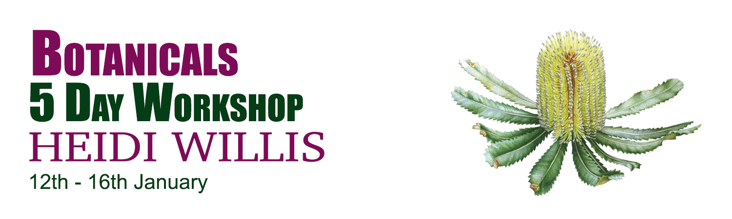 5 Day Botanical Workshop 12th - 16th January 2021