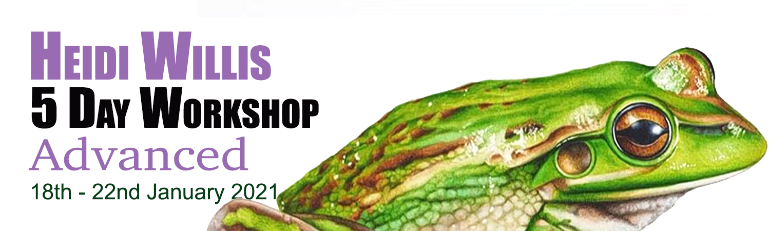 5 Day Advanced Botanical Workshop in the Artworx Geelong Studio