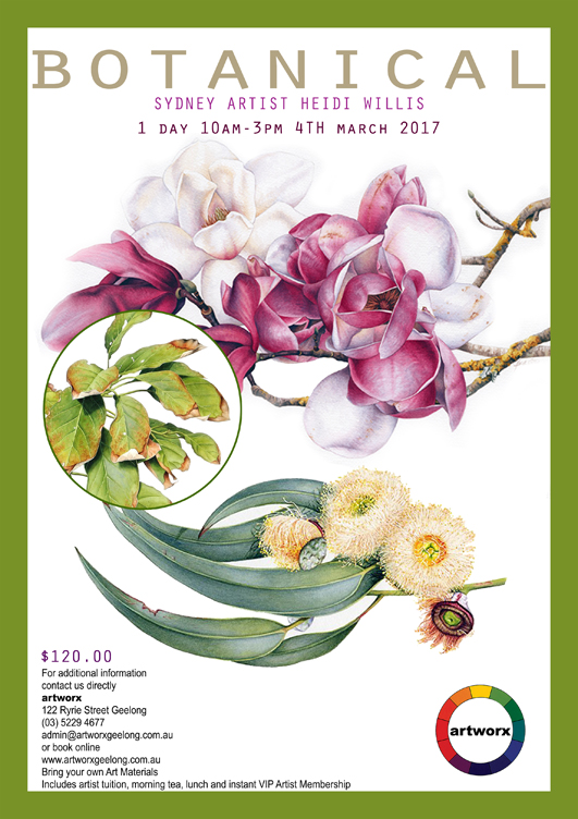 Botanical Drawing Class 4th March 2017 with artist Heidi Willis