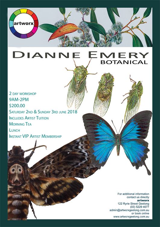 Botanical Insects Saturday 2nd & Sunday 3rd June 2018