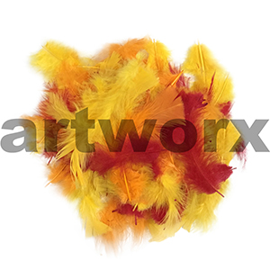 Value Craft - Feather Pack - 10gm - Yellow, Orange & Red
