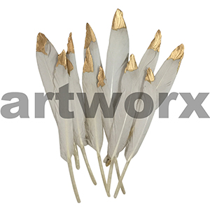 Value Craft Feather Pack 12pc Goose with Gold