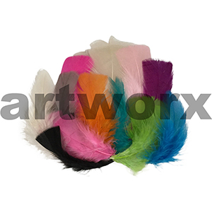 Arbee - Feathers - Medium Mixed 20pc