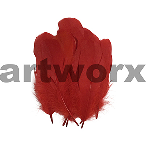 Arbee - Feathers - Red 10pc