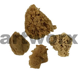 Combination Sponge 4 Piece Set Art Sponges