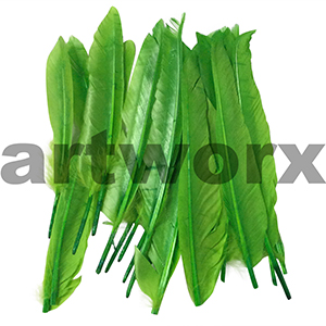 Craft Feathers Green Long Stiff Approx. 24 Pieces