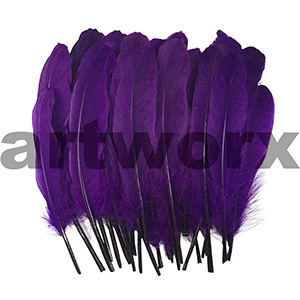 Feathers - Purple - 25 pack