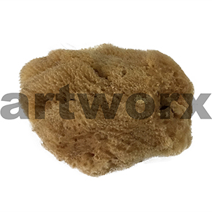 "Natural Sponge Sea Silk 3.5"" Art Sponges"