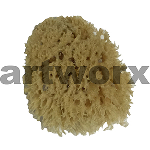 "Natural Sponge Sea Wool 3"" Art Sponges"