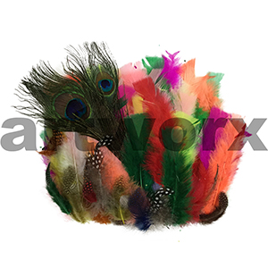 Shamrock Craft Feathers Assorted Multi with Peacock 25g