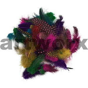 Value Craft - Feather Pack - 2pc - Feather Guinea Hen Plumage Assorted Colours