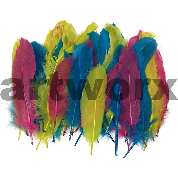 Buy 6gm Goose Satin Bright Mix Value Craft Feather Pack Art And