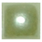 Pearl Miniature Square Green 4mm