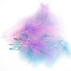 Pastels Bag of Feathers 10gm
