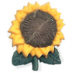Sun Flower Button